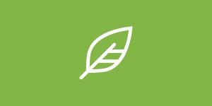 Kiterise Clinic Logo